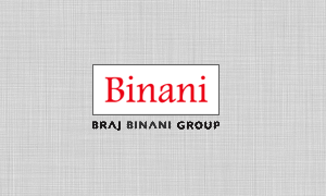binani feature